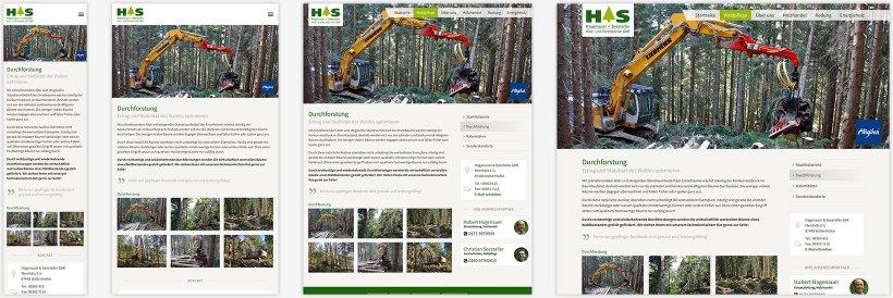 Webdesign von Hagenauer & Seestaller