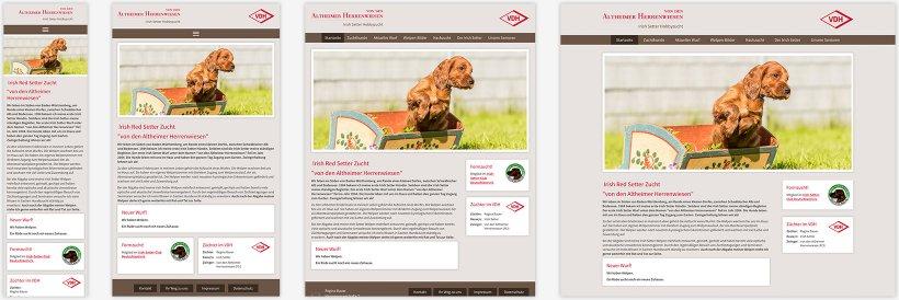 Webdesign von Irish Setter Bauer