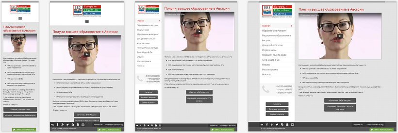 Webdesign von European Education Systems